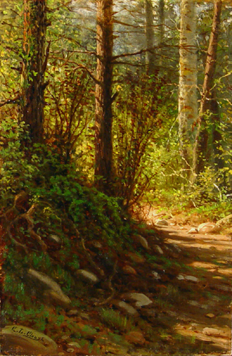 George Clough Woodland Path